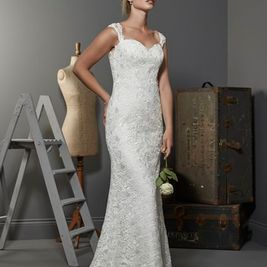 Austria straight lace wedding gown in Ivory size 14